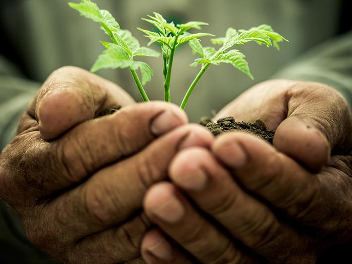 Help Us Grow -