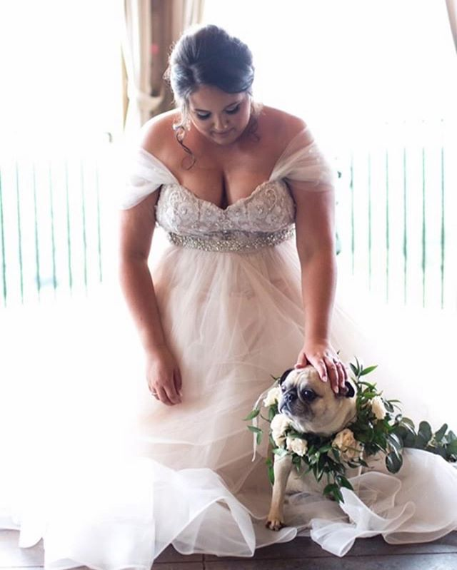 The cutest photo ever!! Bride @haley_reid