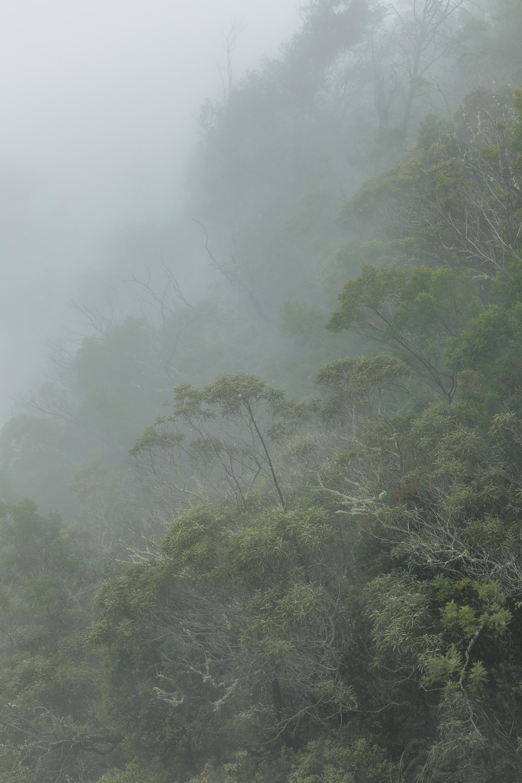 kauai-waimea-canyon-180920-11231.jpg