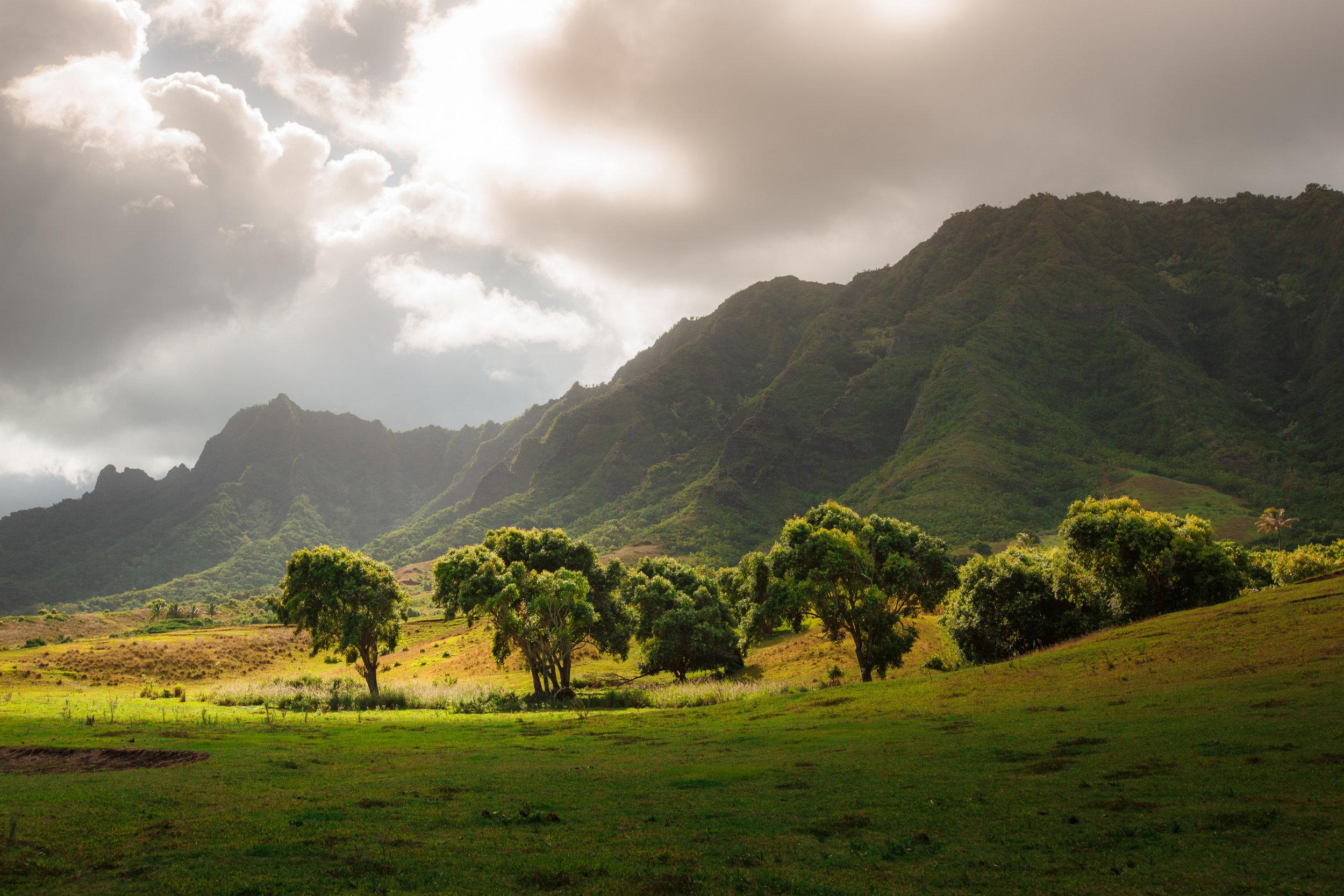 kualoa-ranch-130915-0890.jpg