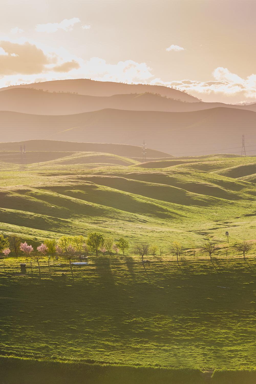 5 Freeway Landscape Vista Point | Stephen Grant Photography