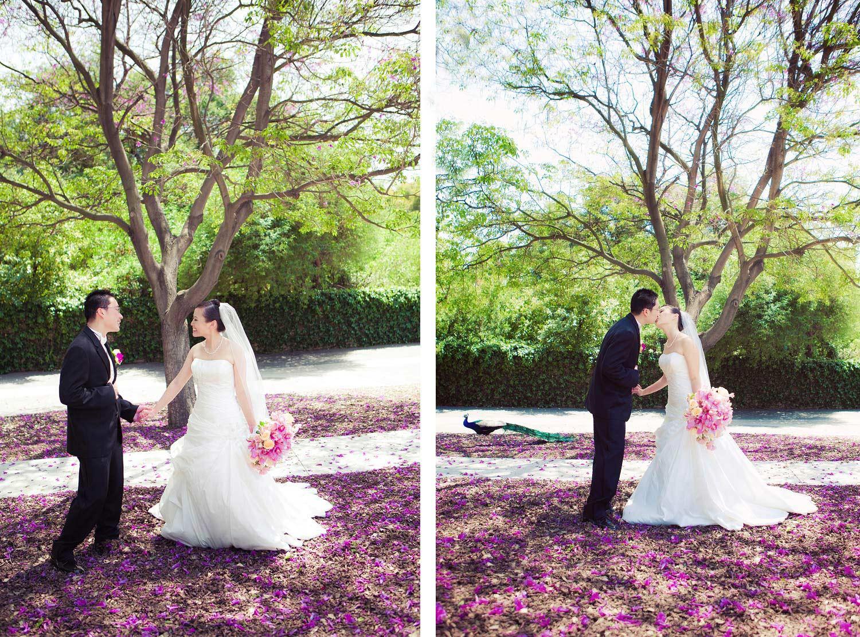 Outdoor Boston Wedding Photographer | Stephen Grant Photography