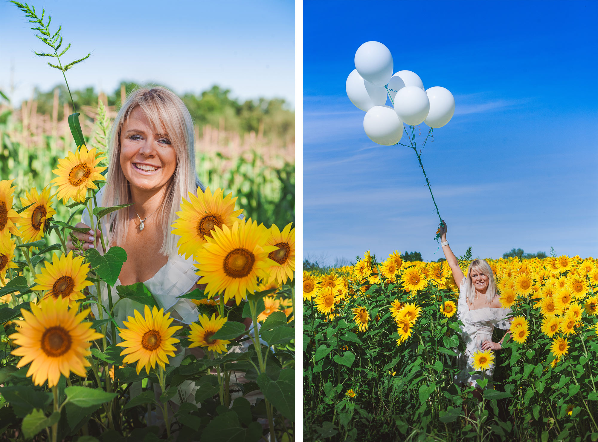 Colby Farm Sunflower Portrait Photographer | Stephen Grant Photography