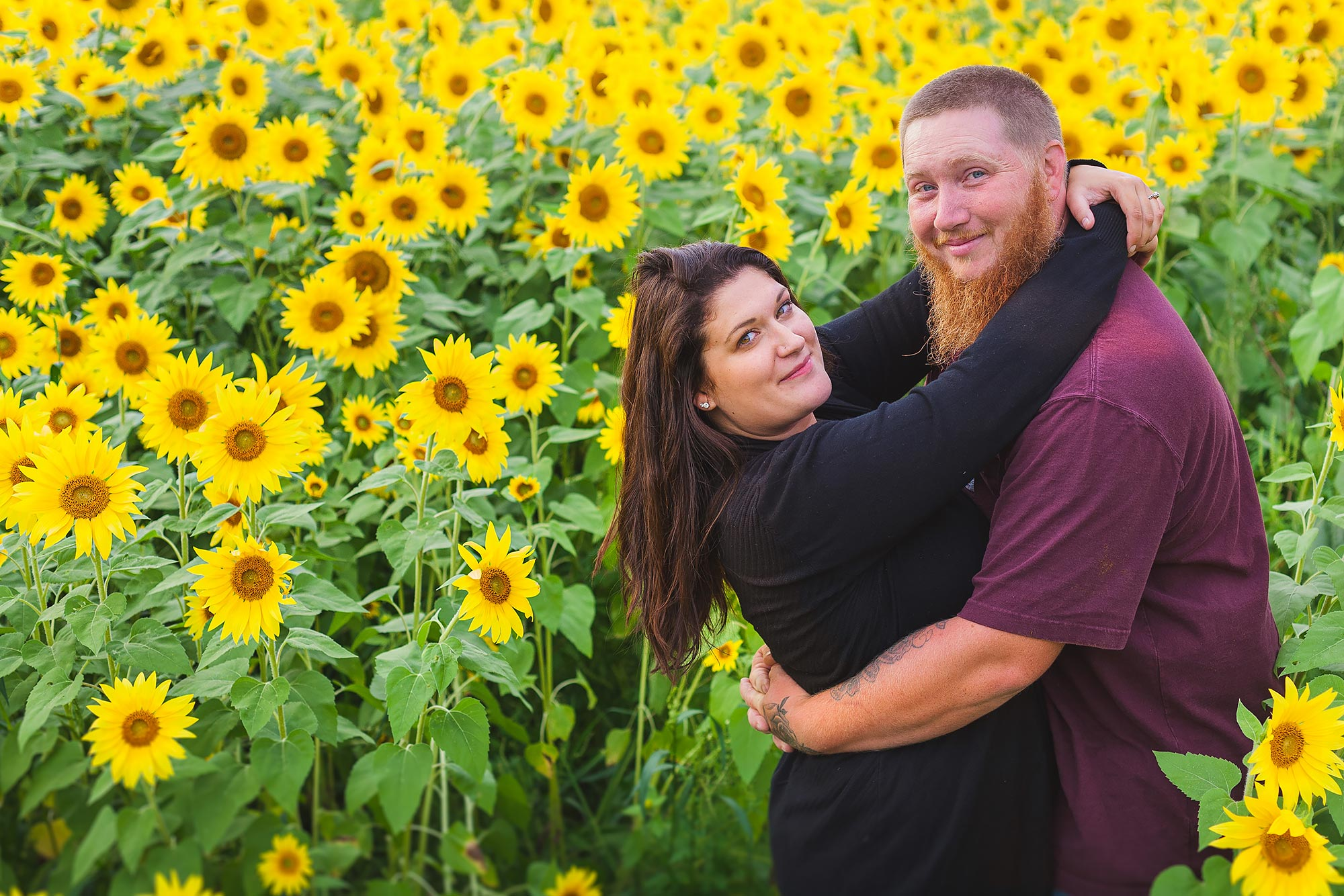 Colby Farm Sunflower Engagement Picture | Stephen Grant Photography