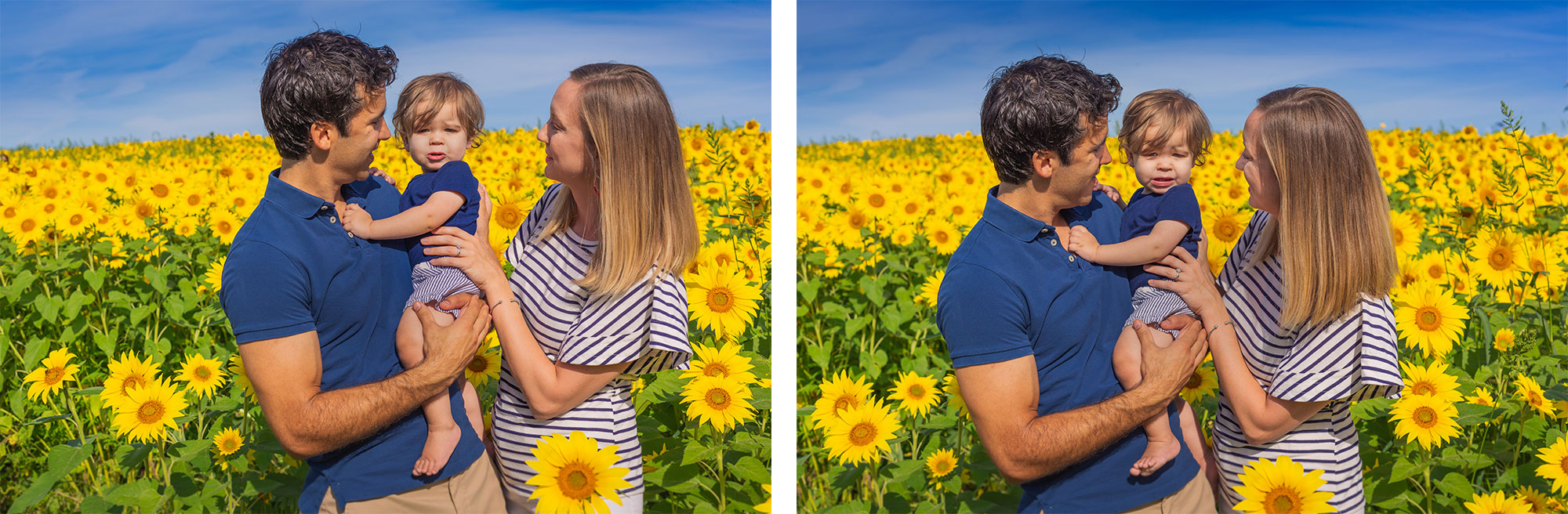 colby-farm-sunflowers-family-portraits-stephen-grant-photography-010.jpg