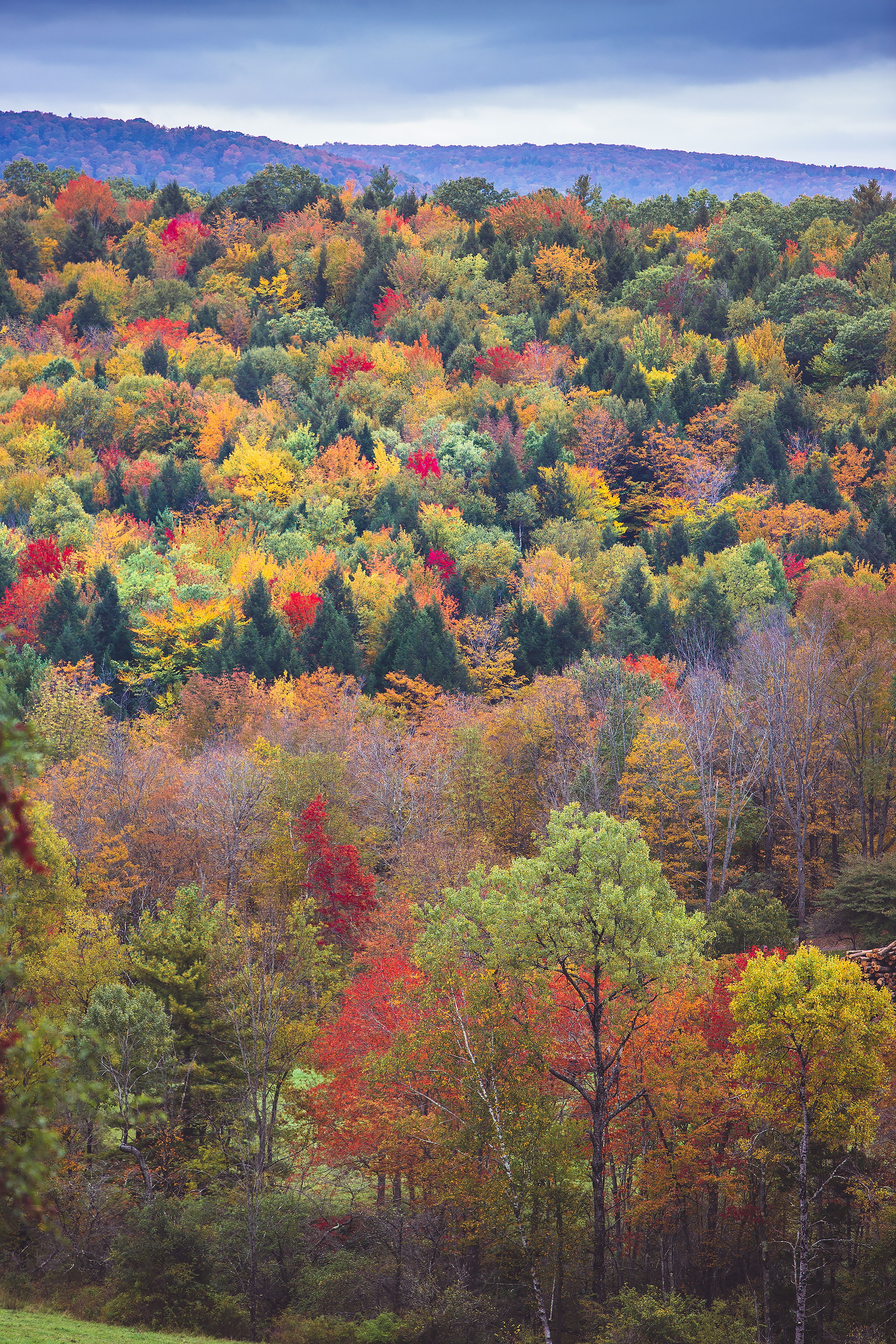 Vermont Fall Foliage | Stephen Grant Photography