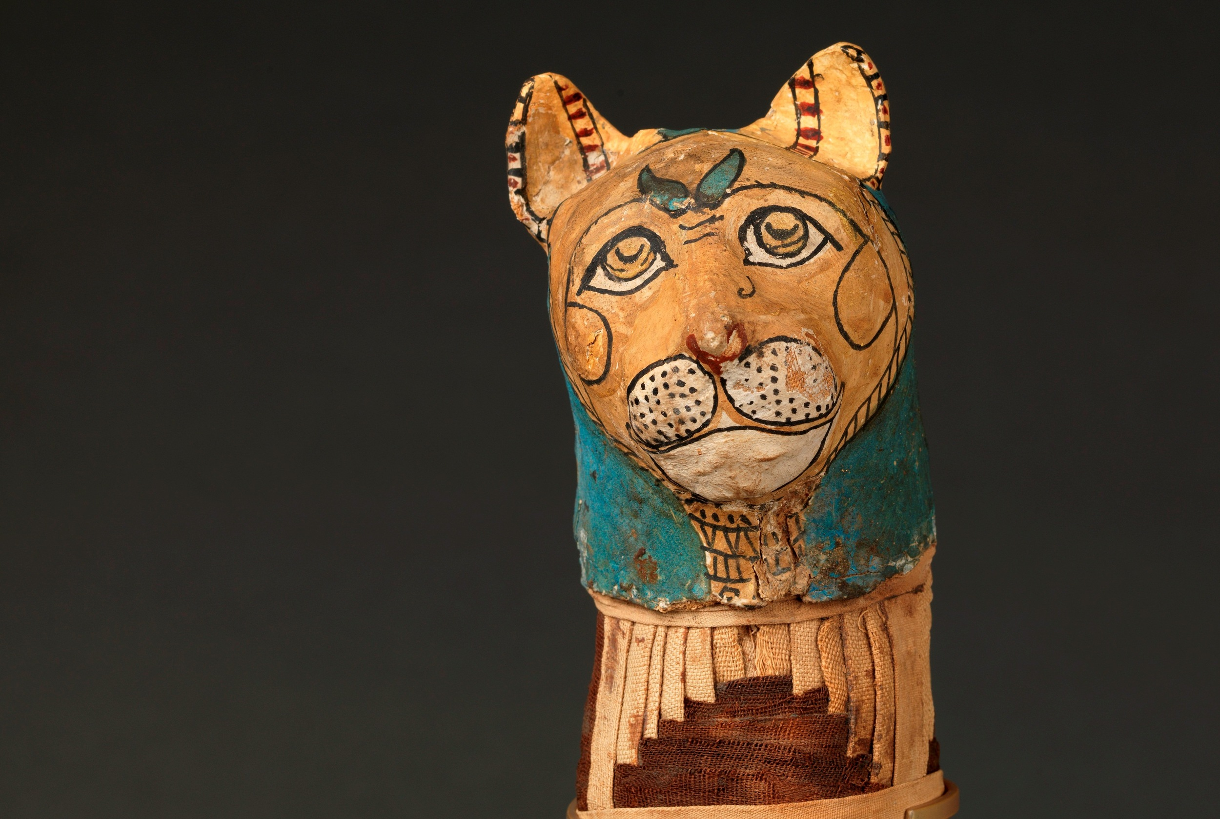 Late P or Ptolemaic P Cat Mummy, Louvre 1C - Christian Décamps.jpg