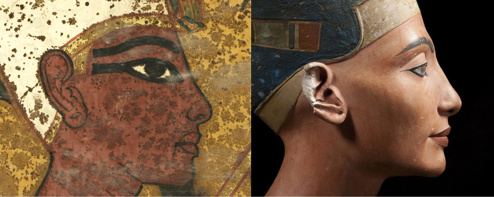 Nicholas Reeves believes that stylistically, the scenes painted on the northern wall of the tomb actually represents Tutankhamun completing the funerary ritual for Queen Nefertiti, his predecessor. Conventional thinking says that the painting shows King Ay doing the rituals for Tutankhamun. Comparing images of 'Tutankhamun', Reeves noticed how the jawline, brow, nose, chin and the distinctive 'oromental groove' running down from the corner of her mouth, unique to Nefertiti, all point to this pharaoh actually being the famous queen.