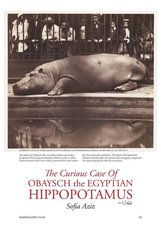 Nile 9, Hippos 1 1B 35%.jpg