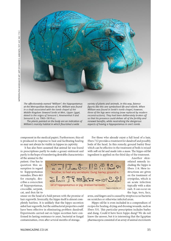 Nile 9, Hippos 2 1B 35%.jpg