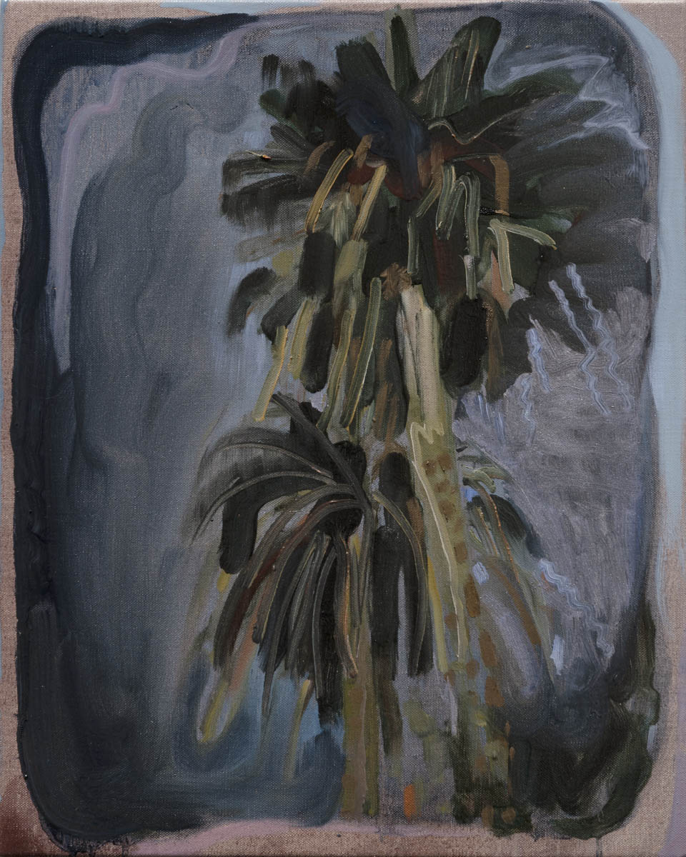 Large Palm Trees stand swaying outside the Collingwood gym, leaves like big shaggy Soft Firecrackers exploding in the sky, Hoddle street humming by their side. Oil on linen, 51cm x 41cm, 2019. Counihan Gallery group exhibition March 2019, Brunswick Town Hall Melbourne. Photography: Simon Strong