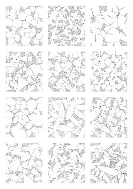 Collage+ridotto+per+web.jpg