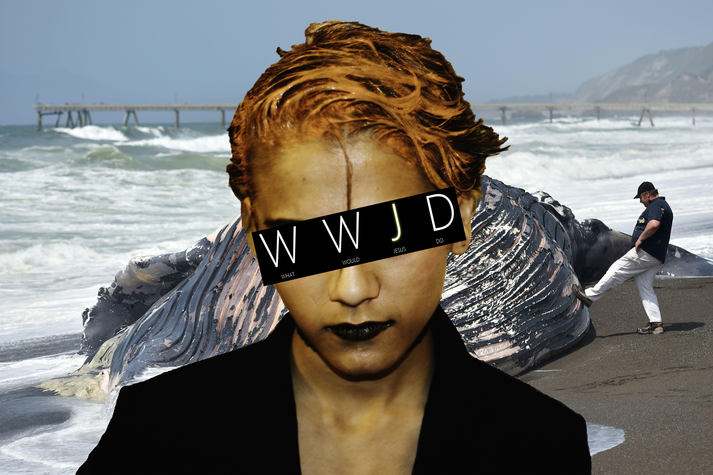 Washed up whale.jpg