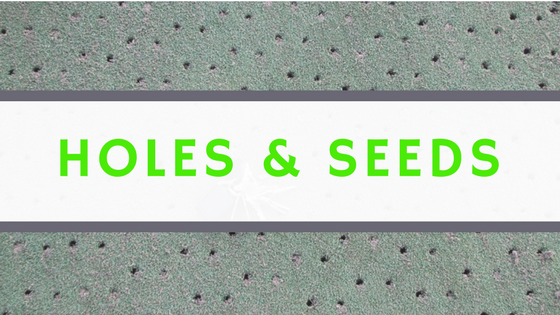 Holes and Seeds.png