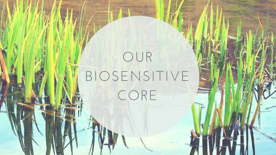 our biosensitive core.png