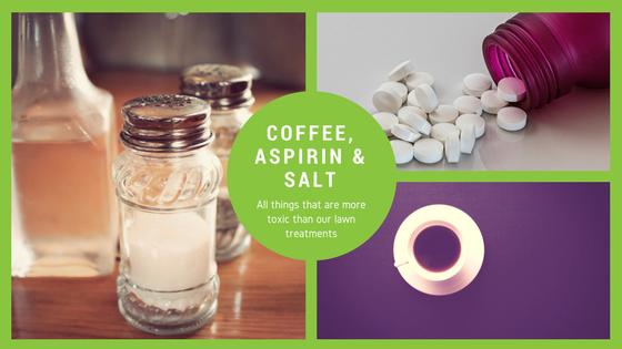 Coffee, Aspirin & Windex.png
