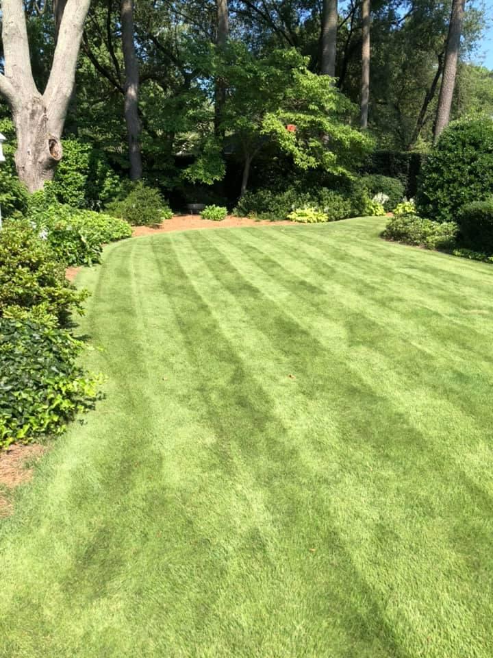 Eco-Friendly Lawn Maintenance