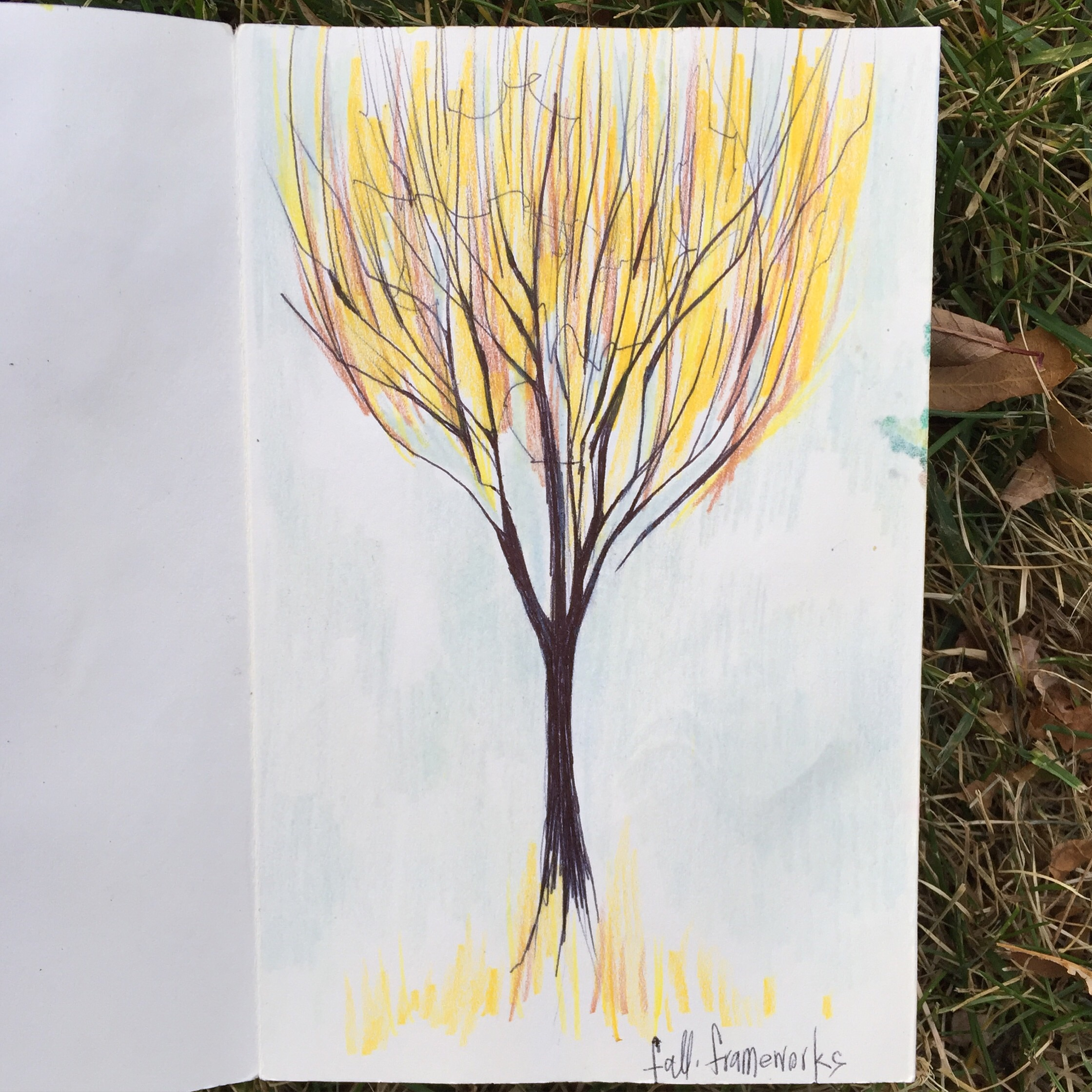 Ballpoint pen & pencil crayons