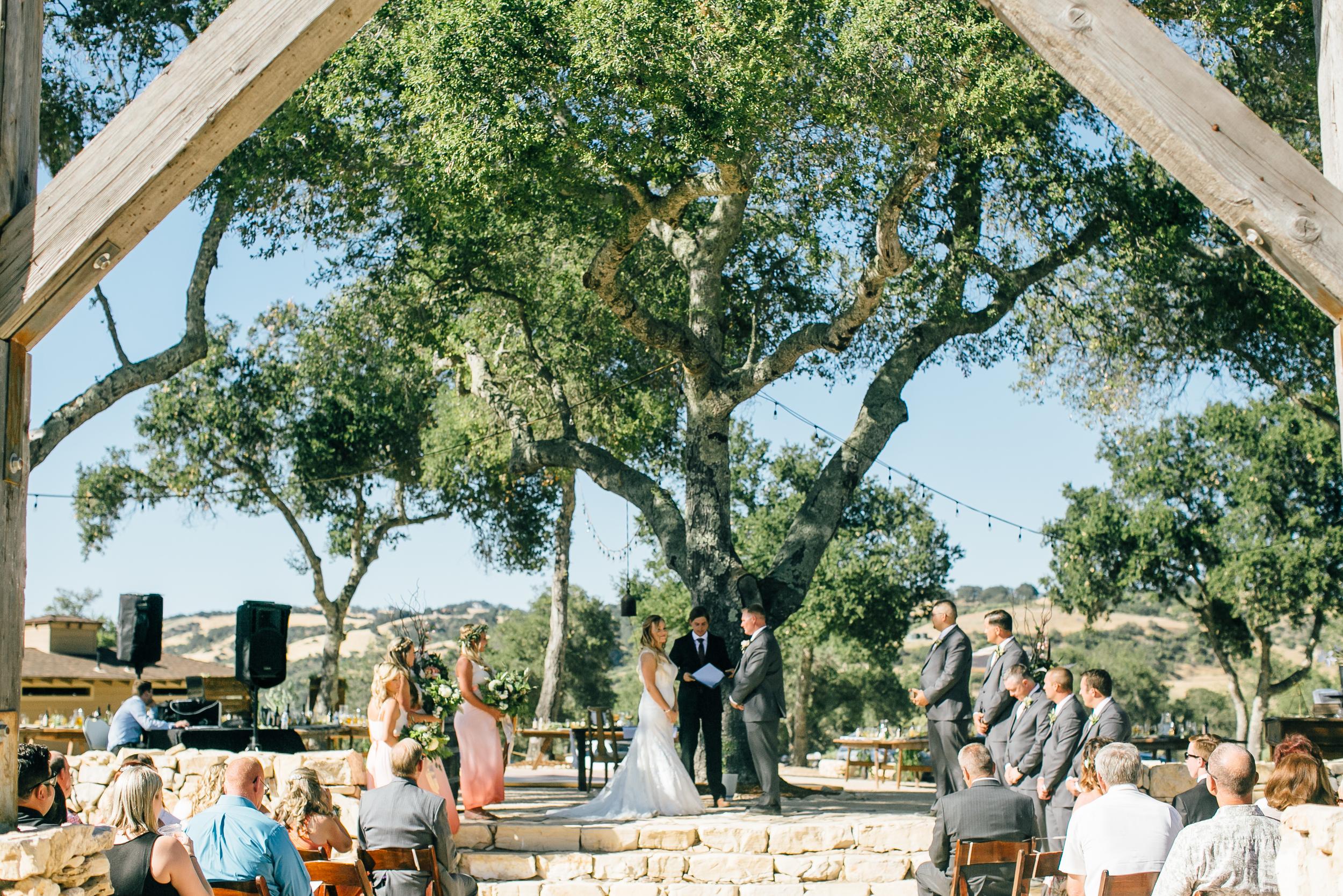 Tozzi Wedding, 2016 (143 of 353).jpg