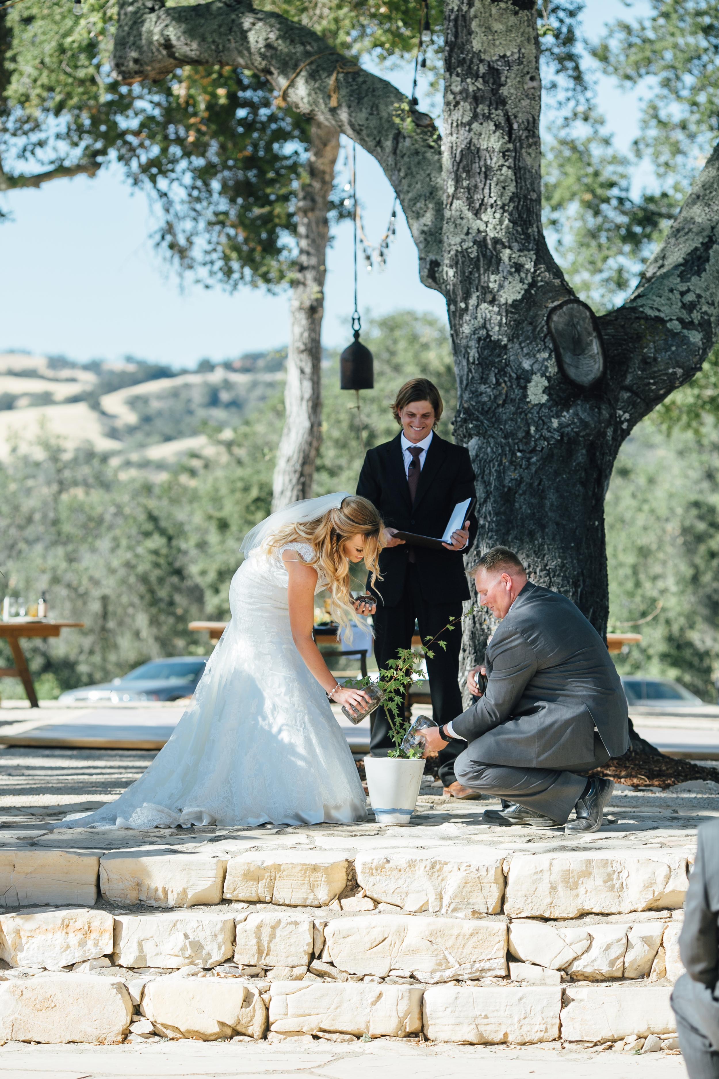 Tozzi Wedding, 2016 (152 of 353).jpg