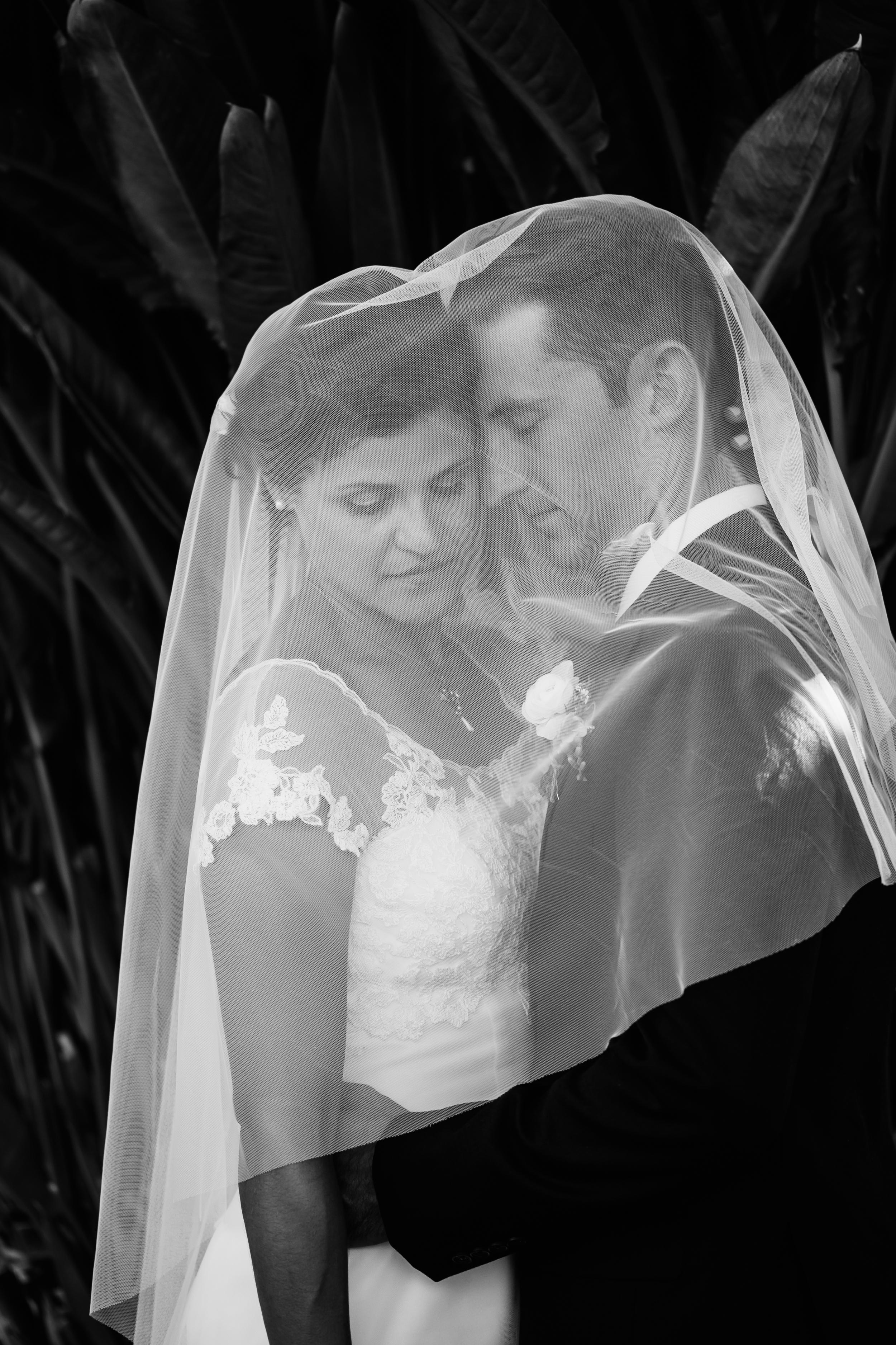 Freeberg Wedding, 2016 (174 of 273).jpg