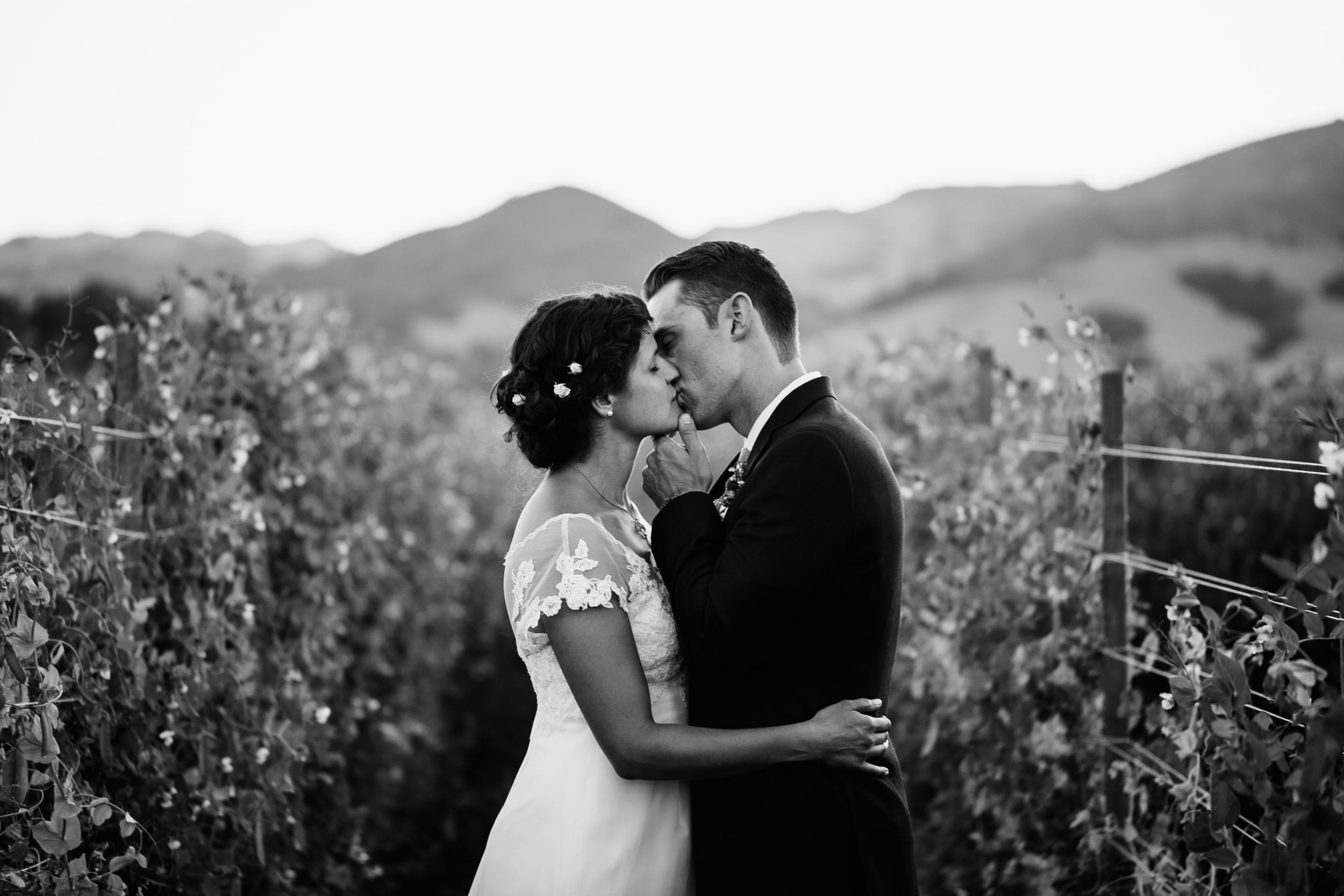 Freeberg Wedding, 2016 (258 of 273).jpg