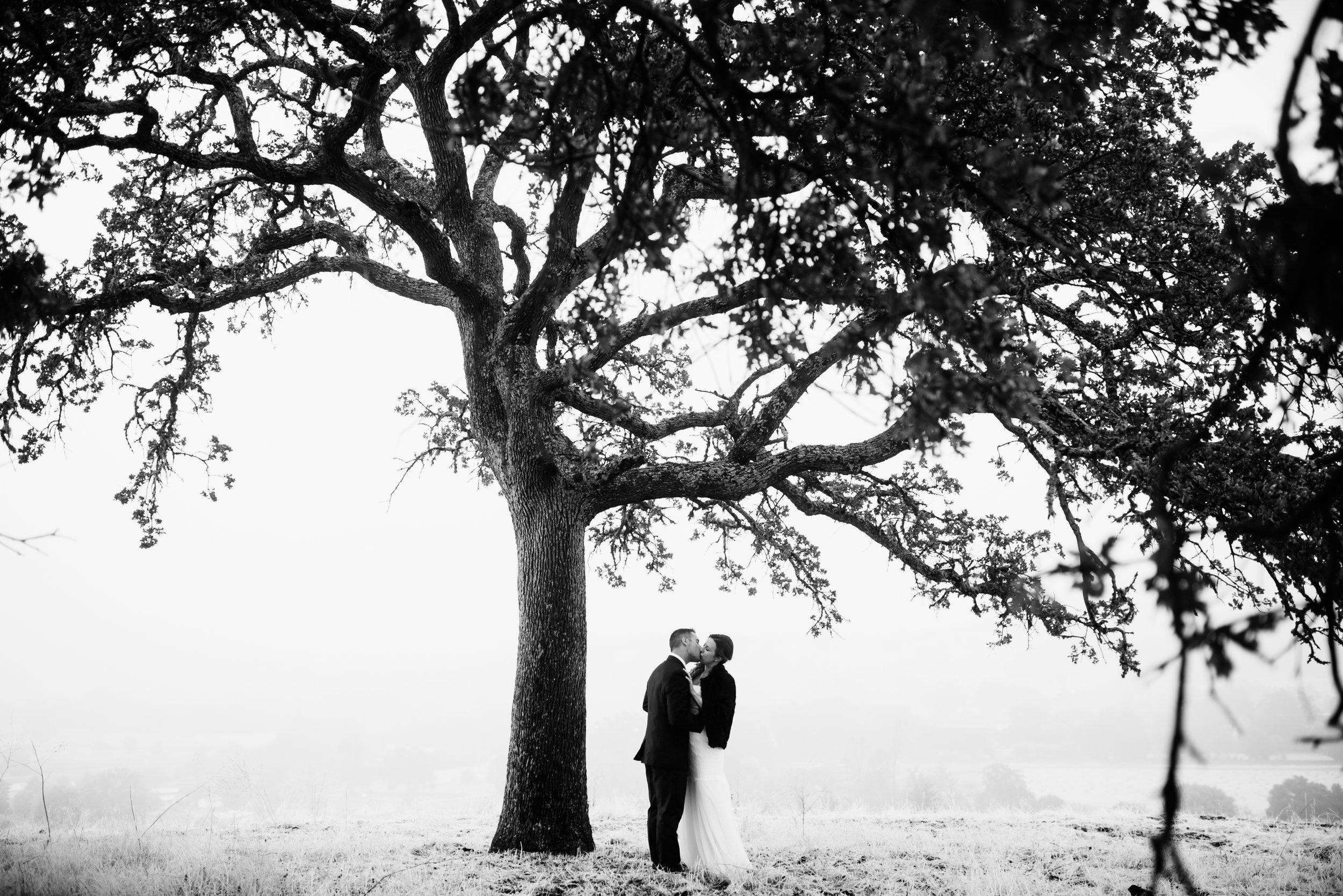 Grant Wedding, 2016 (738 of 1078).jpg