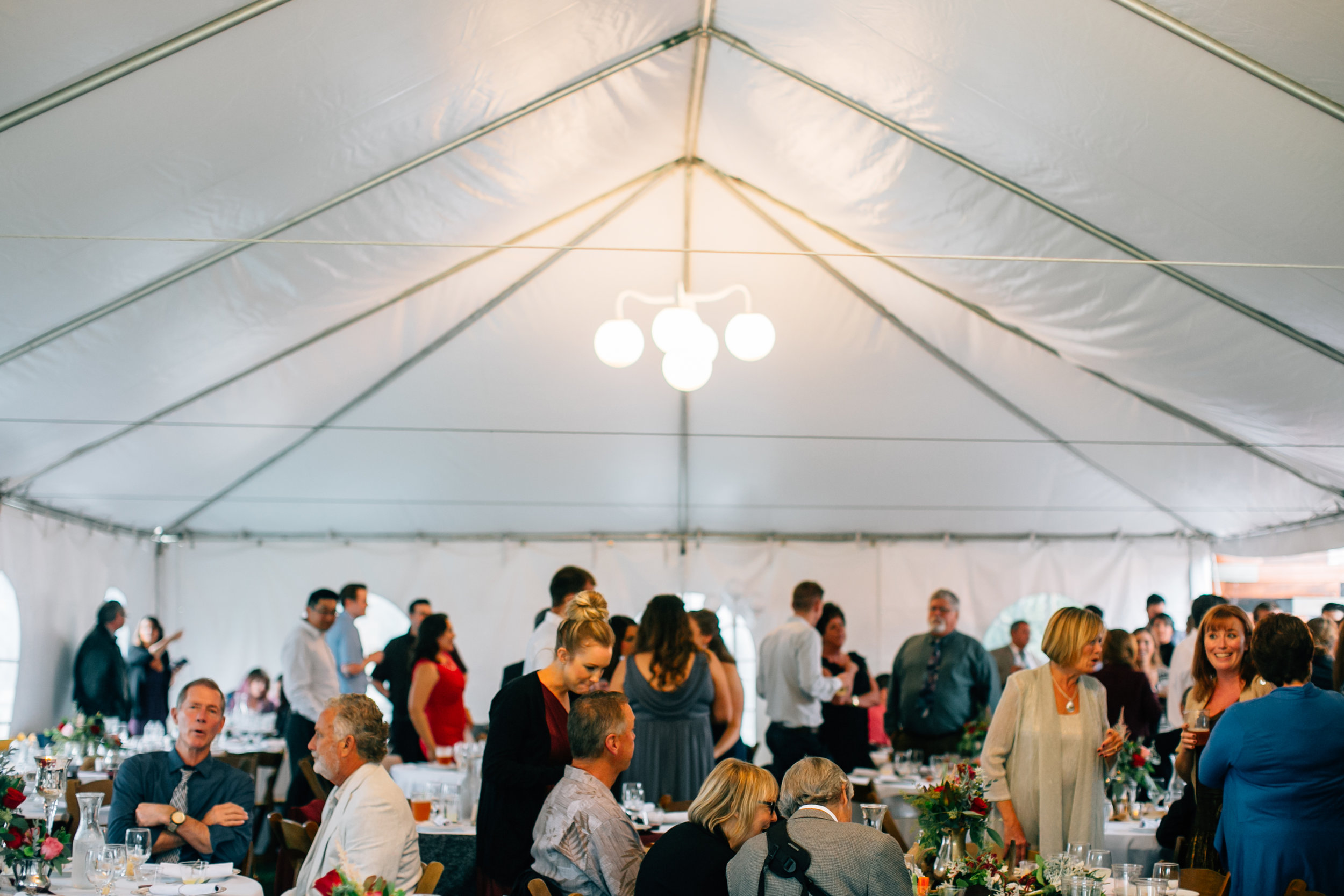 Grant Wedding, 2016 (745 of 1078).jpg