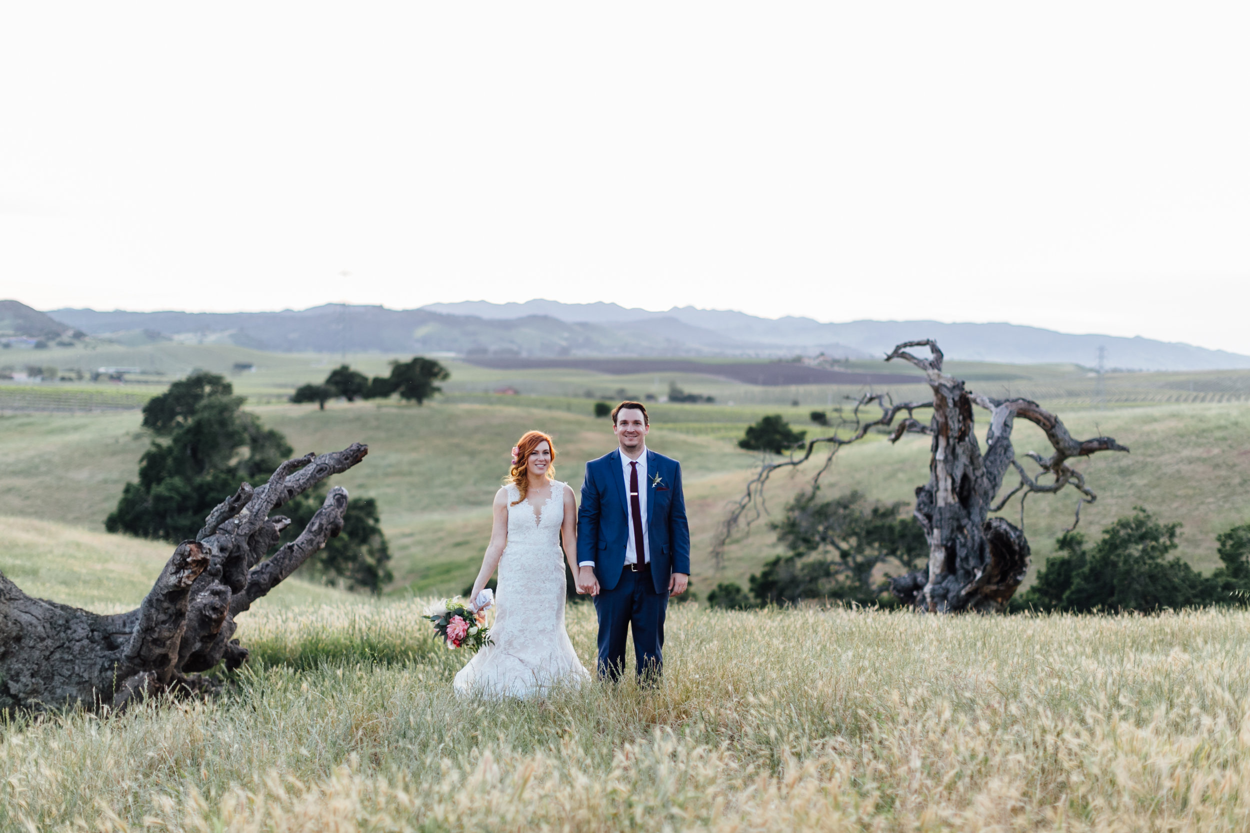 Stephanie + James, 2017 (260 of 389).jpg