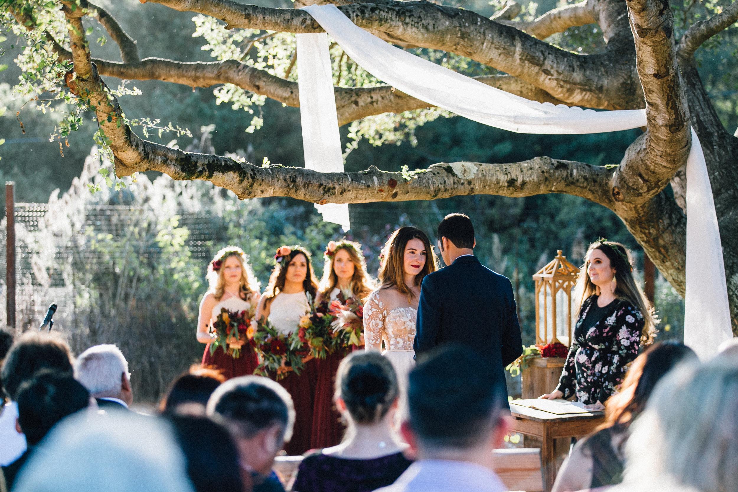 Gazipura Wedding, 2017 (303 of 501).jpg