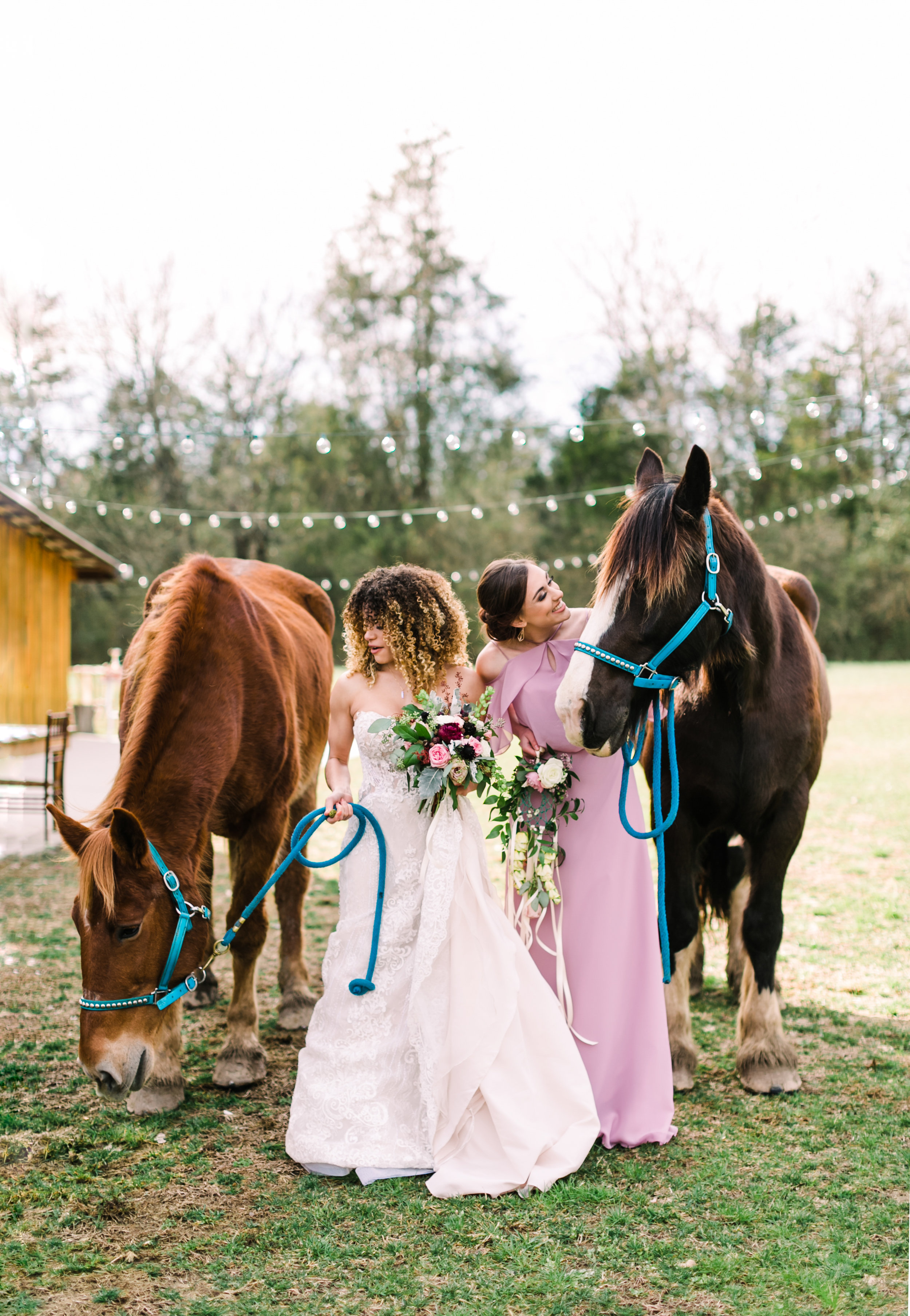 romantic+valentines+day+wedding+horses+chapel (8 of 11).jpg