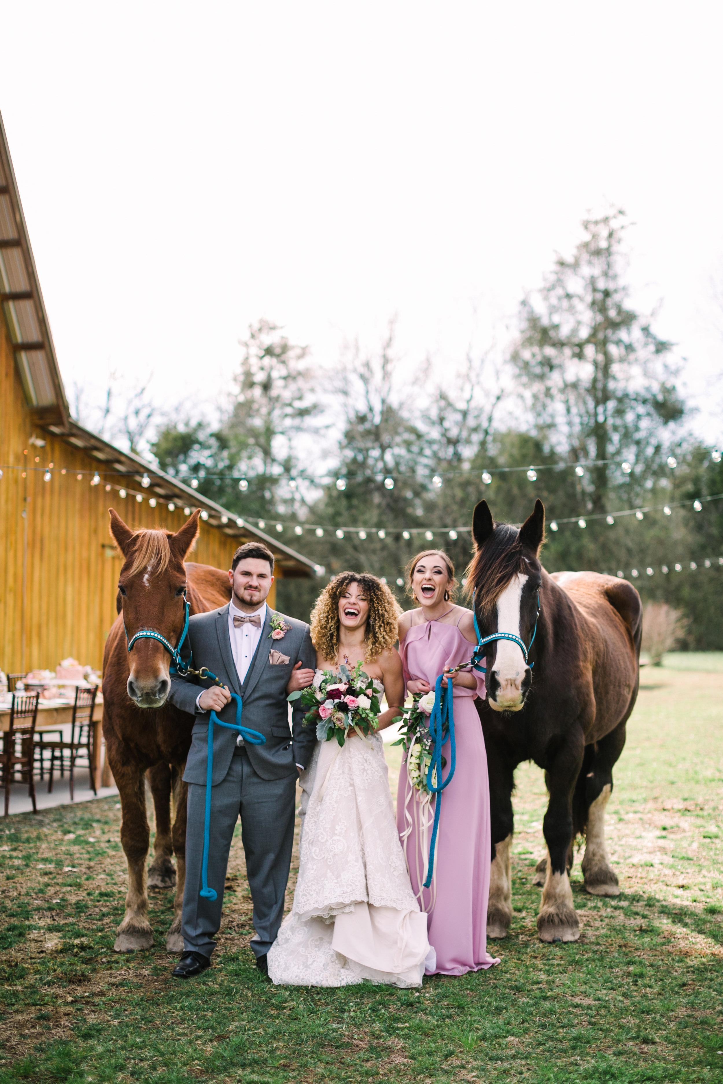 romantic+valentines+day+wedding+horses+chapel (10 of 11).jpg