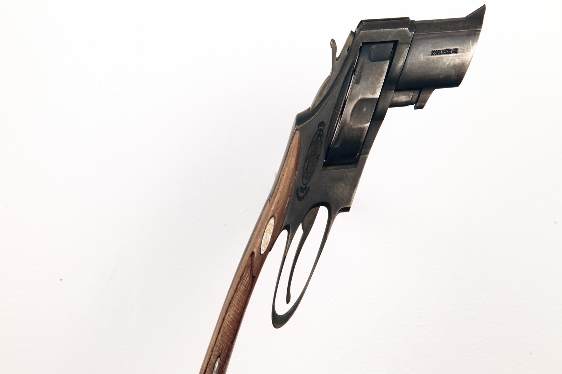 gun  (v), detail