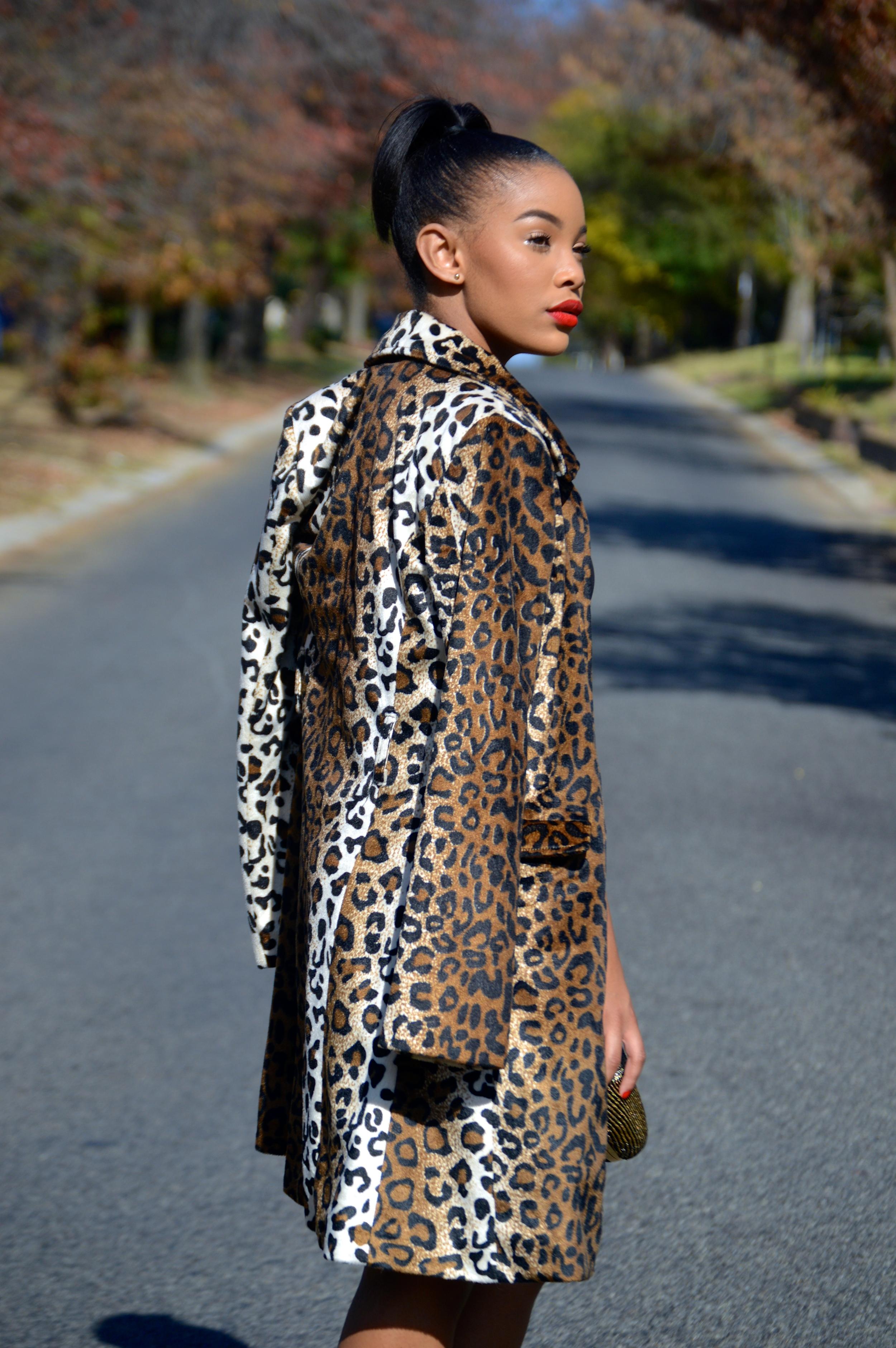 Kaylista_Leopard_10