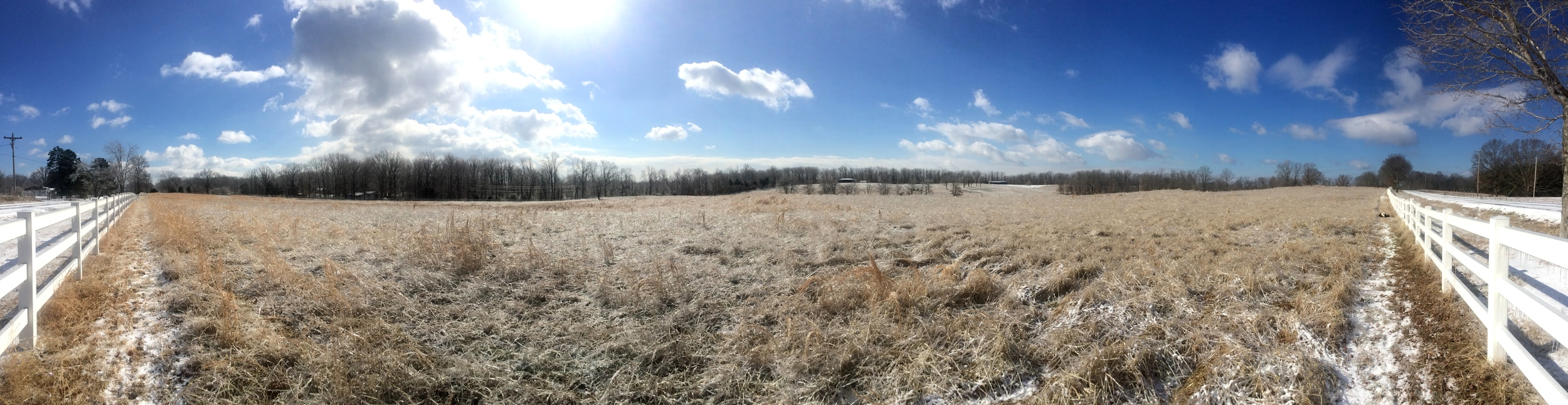 A panorama of the icy farm. Notice Winnie on the far right is rolling around.