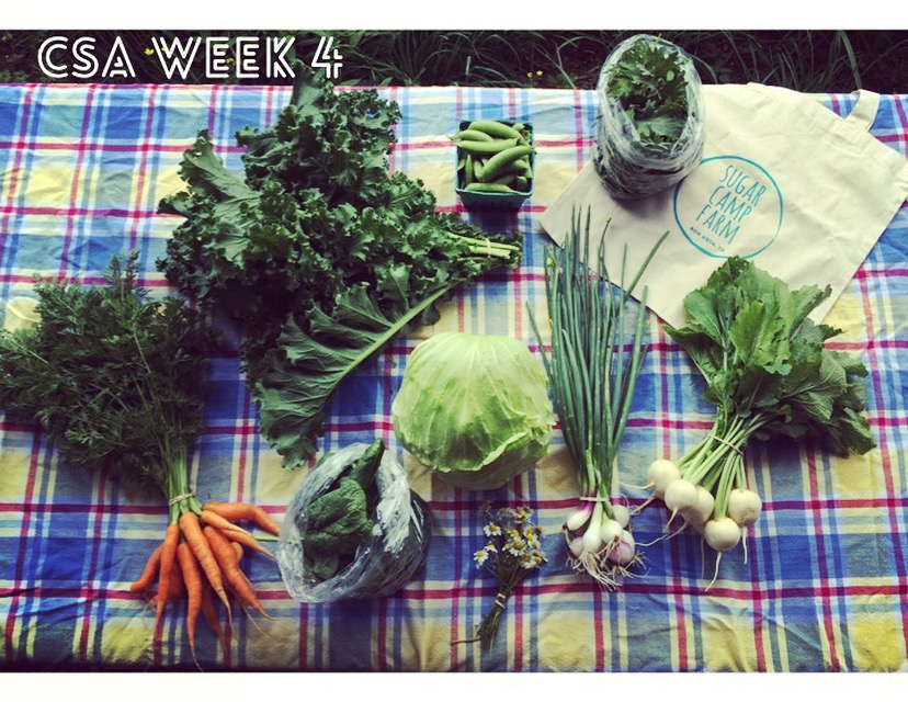 Carrots, kale, spinach or lettuce, cabbage, chamomile, sugar snap peas, green onions, salad turnips or radishes, braising greens (baby mustards and baby kale!) Bag not included! but!! They are on sale for $8 for CSA and credit members!
