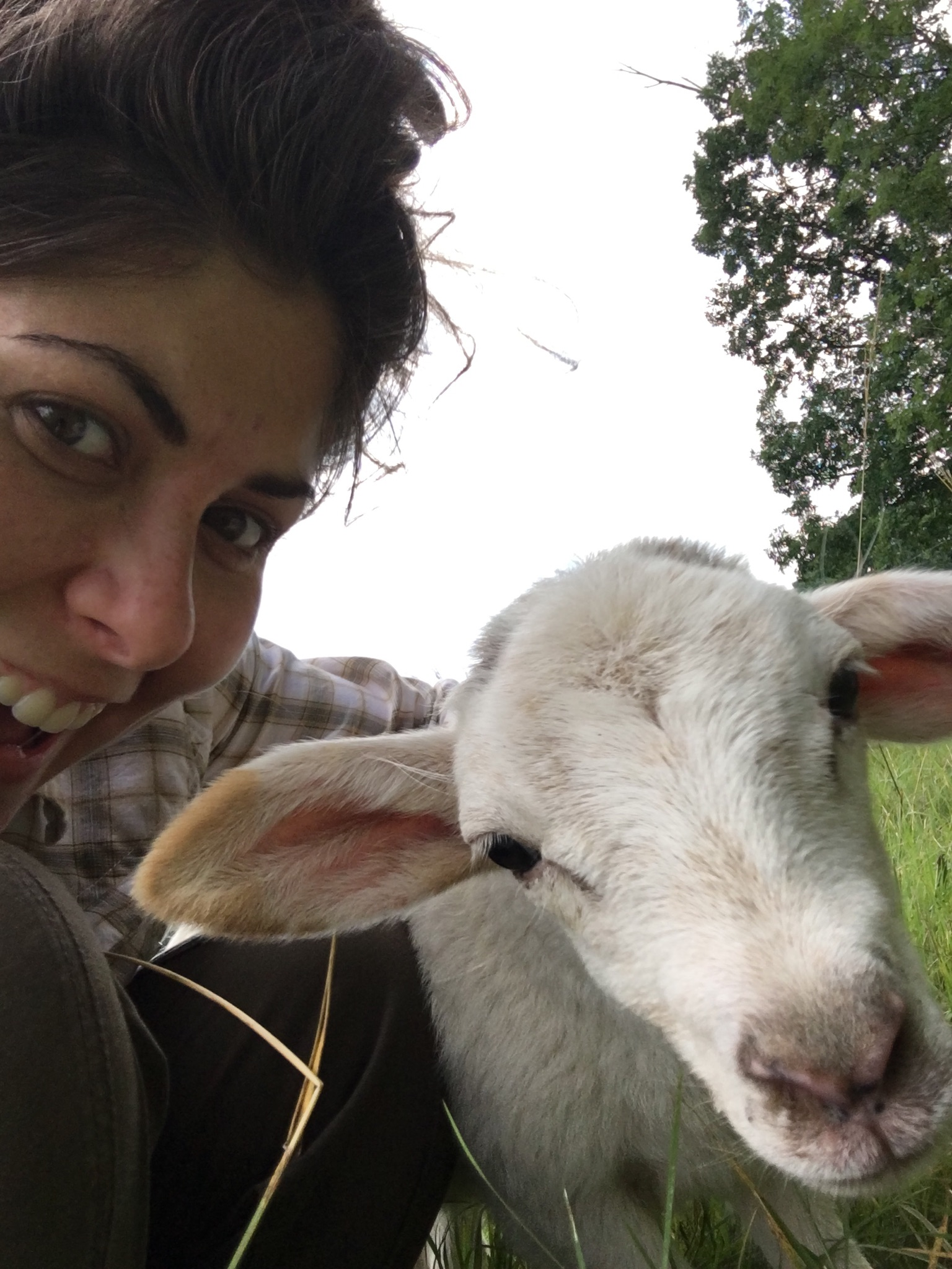 Monica and Baby Lamb.