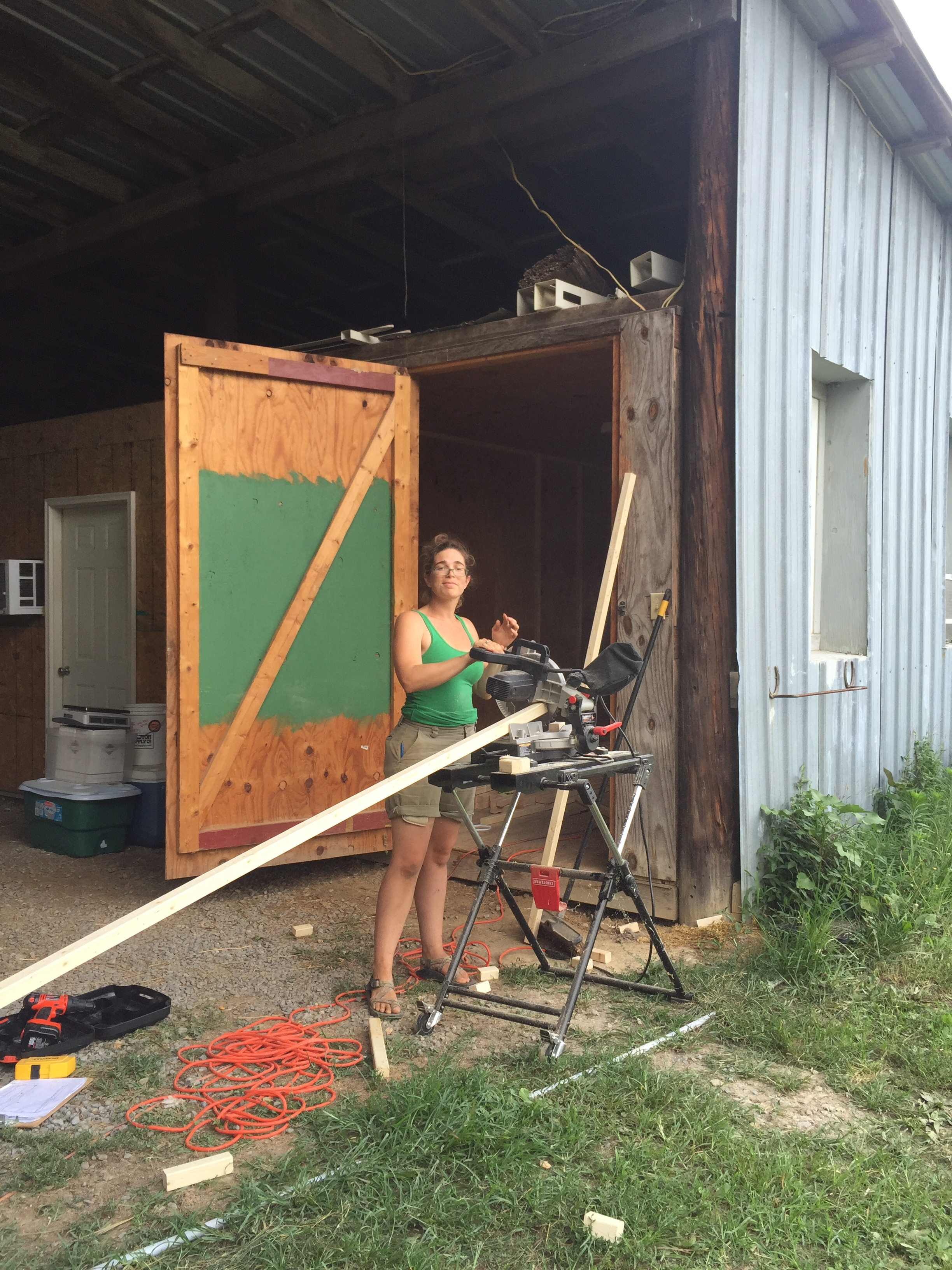 Lizzie sawing up 2x2s for the tack room renovation project!