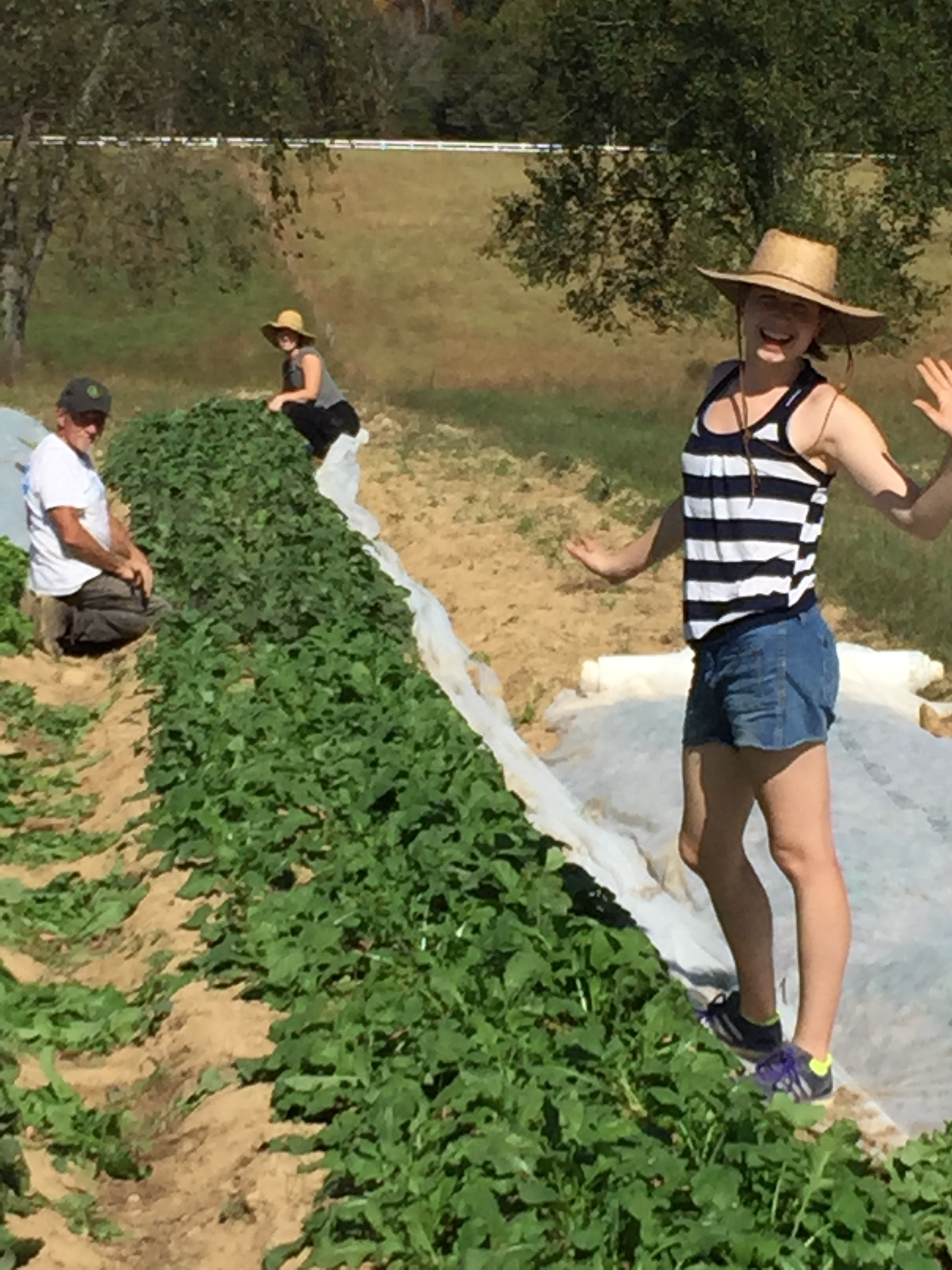 Holly, Tony and Kendall thinning radishes! we love our family!