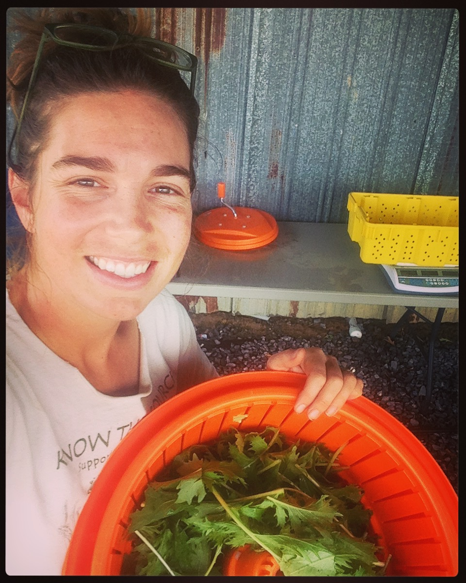 Lizzie processing and washing greens at the washing station!