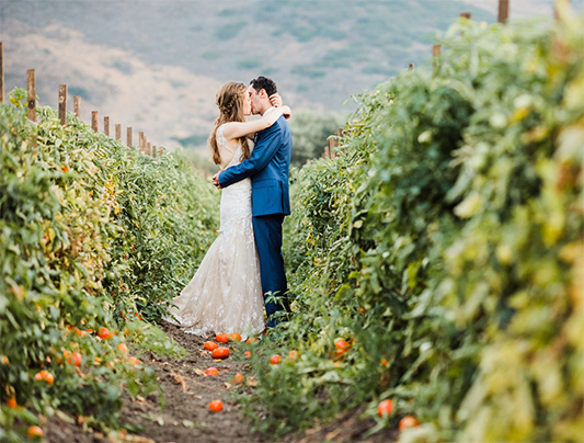 Our wedding venue in Ventura county offers an array of wedding services.