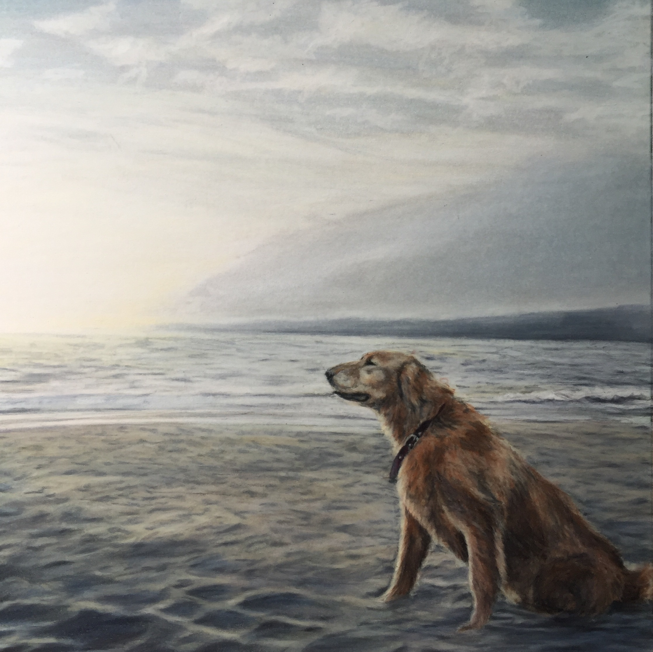 Beach Retriever.jpg