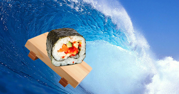 surfbort_100kb.jpg