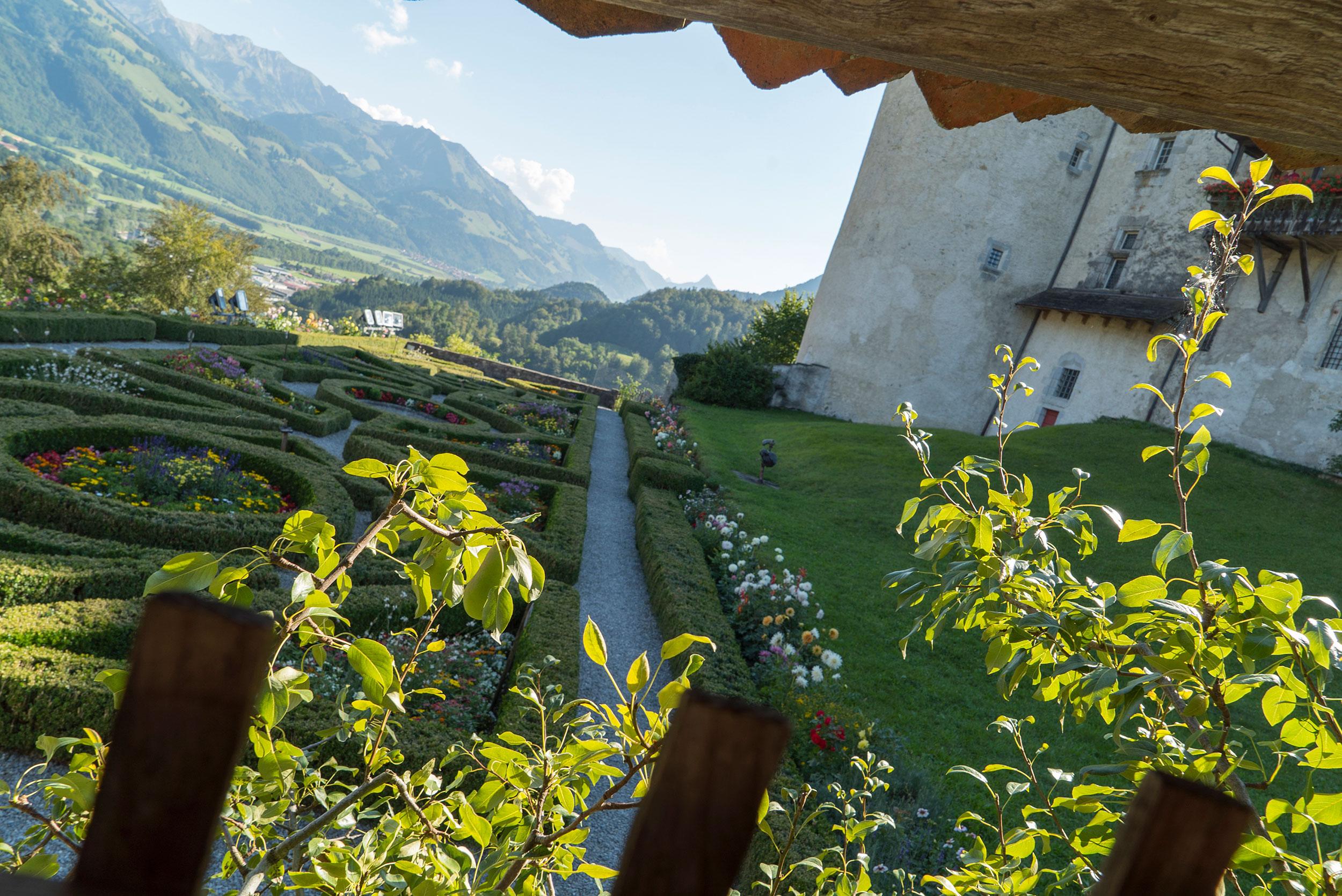 Loizou-Blog-Swiss-85.jpg