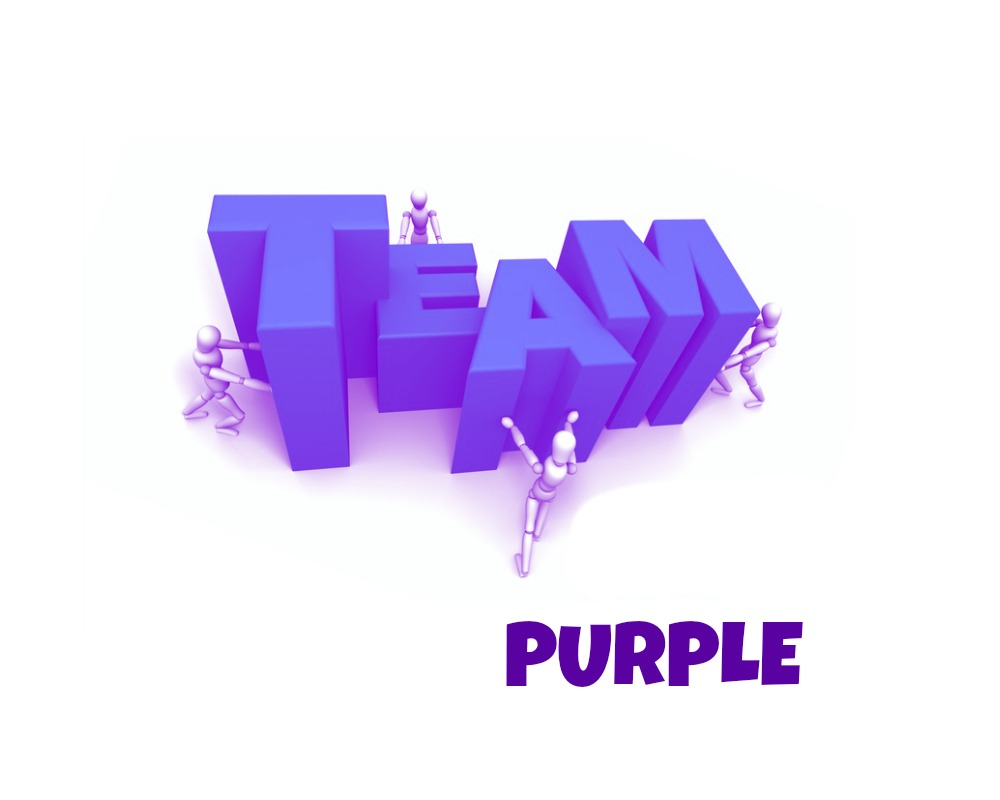 YASH Team Purple Logo.jpg