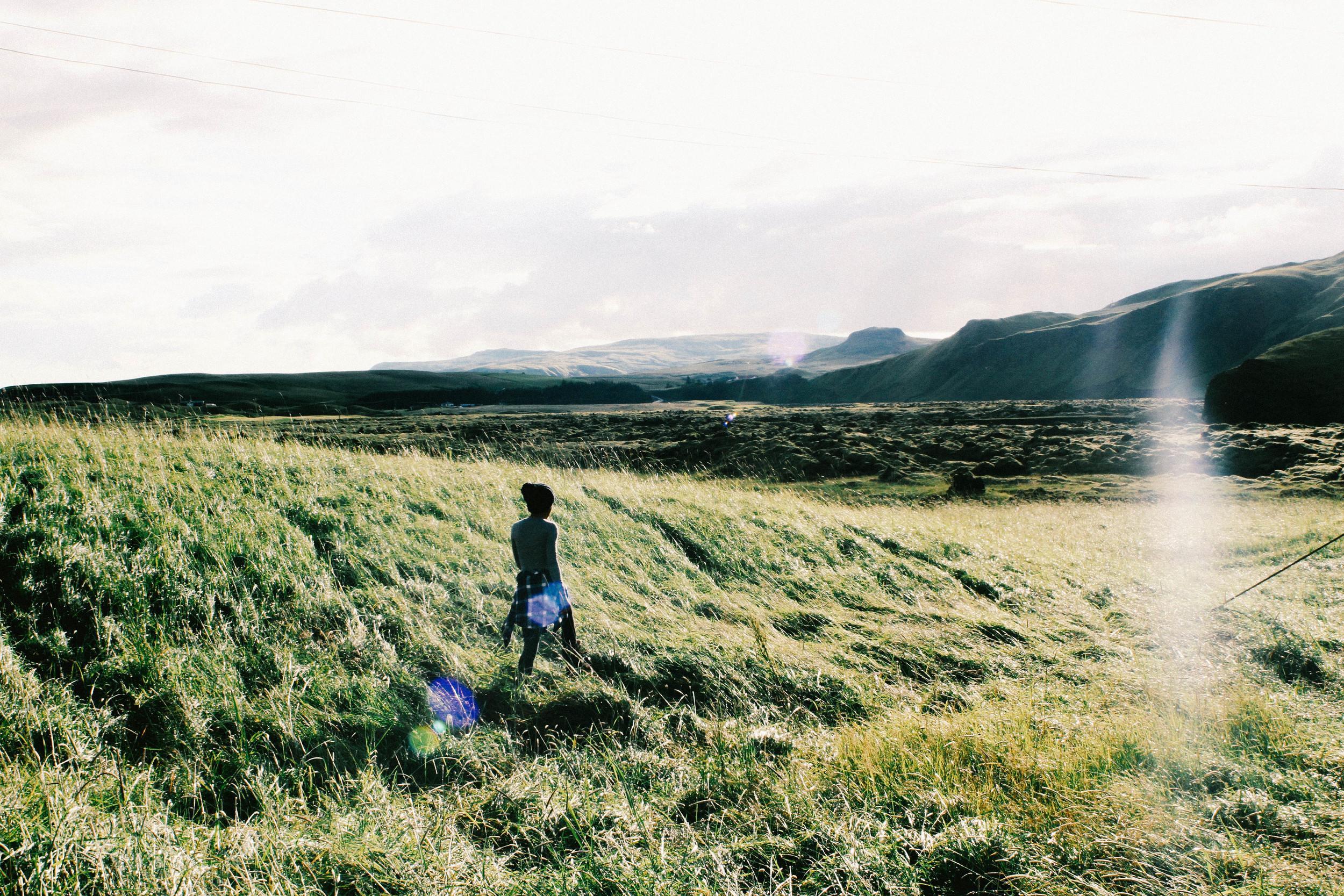 Z EDIT 1- Green Field in Iceland.jpg