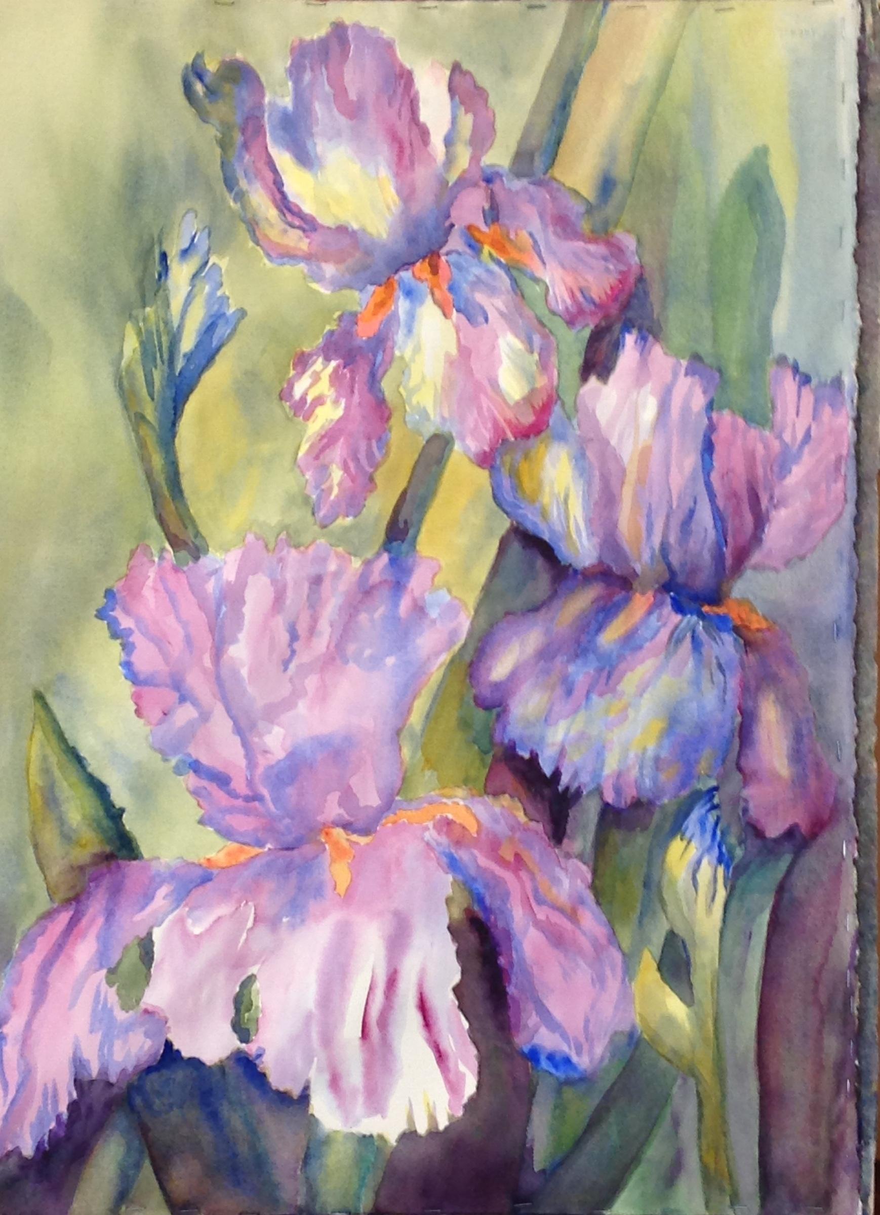 Old Fashioned Iris