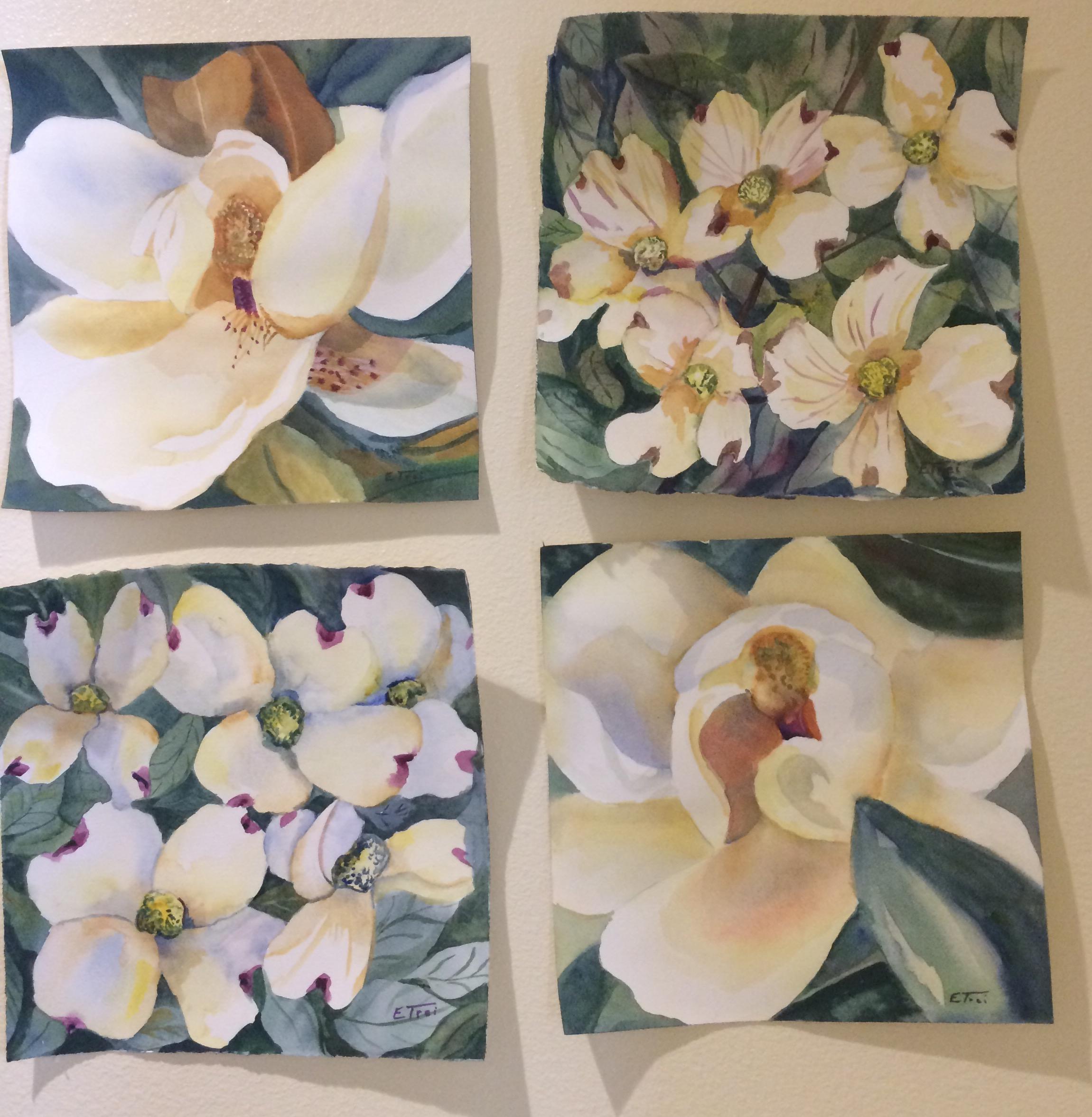 Magnolias and Dogwoods