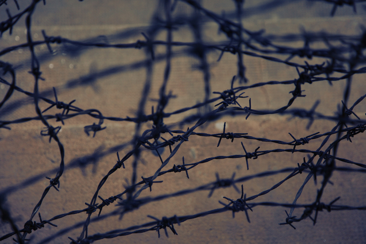 Barbed Wire 3 (Khmer Rouge Security Prison 21)    2012, 1 of 6   Museum Archival Digital C-Print   30 x 40 in.
