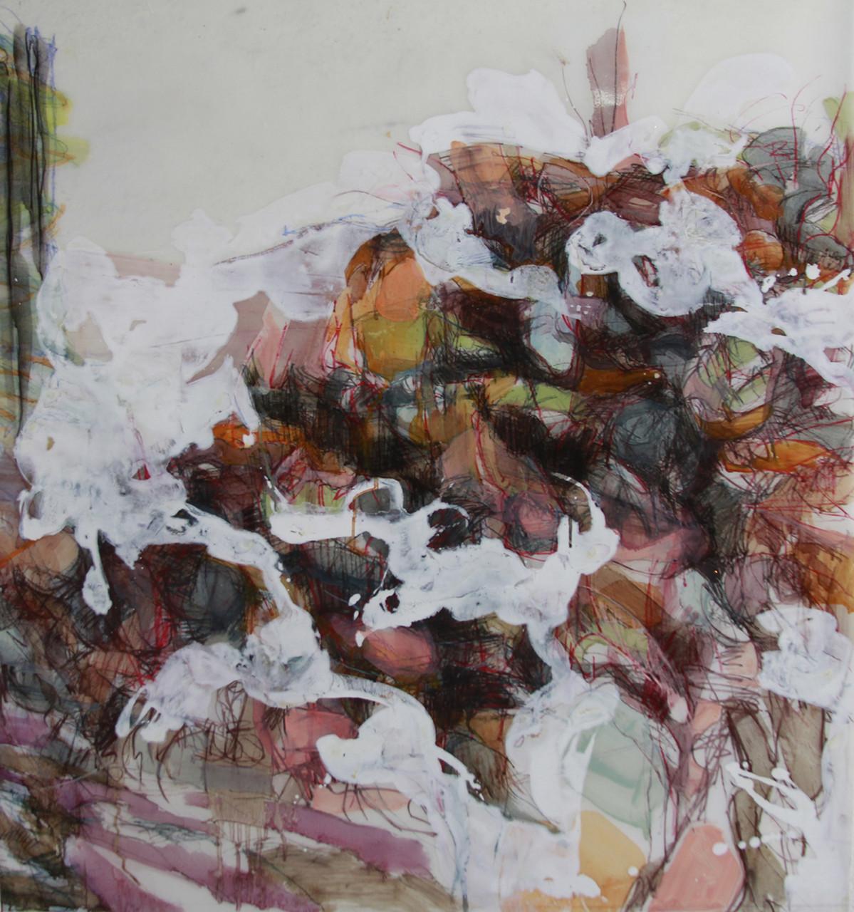 Fluid Obscure , 2014 Charcoal, oil pastel, and enamel on mylar 30 x 32 in.